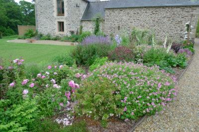 Ameline Arbora Paysagiste jardin anglais fleuri dinan