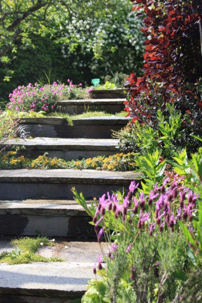 Ameline Arbora Paysagiste escalier jardin dalle de granit